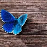 Come Accettare e Gestire il Cambiamento